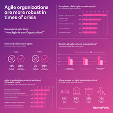 Agile Pulse 2020 Infographic
