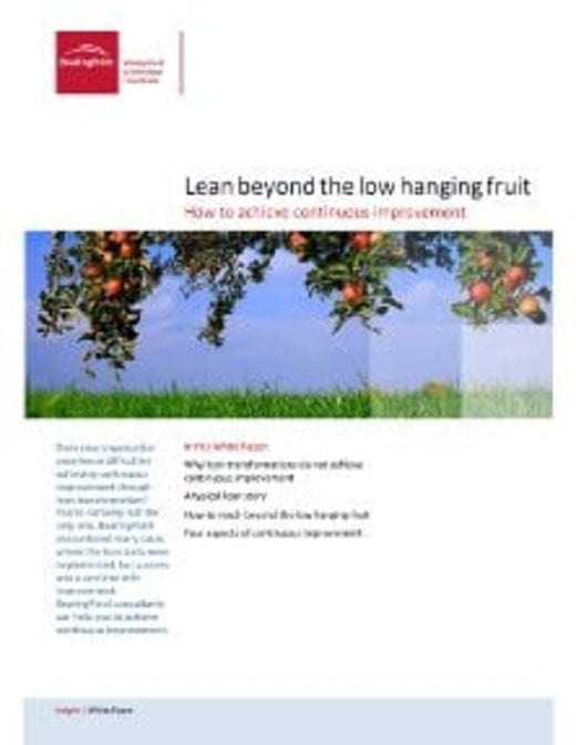 Lean beyond the low hanging fruit
