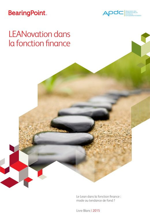 LEANovation dans la fonction finance